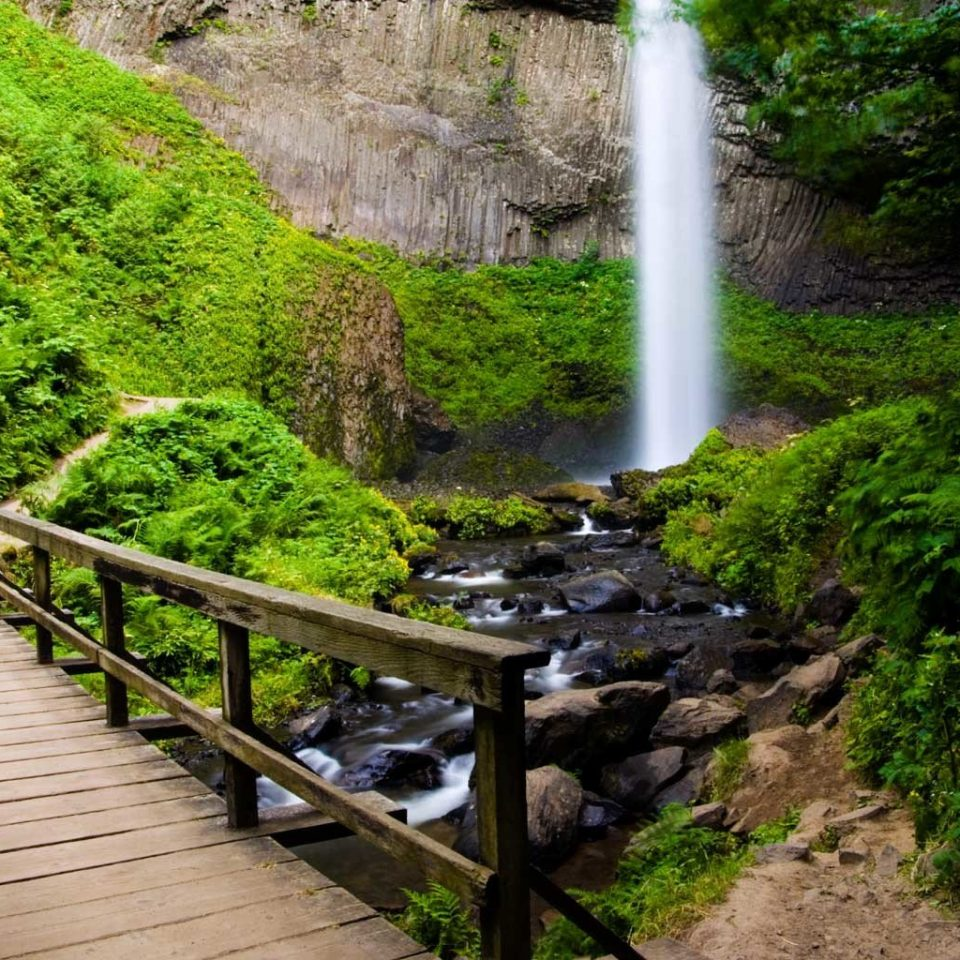 Adventure Natural wonders Nature Outdoor Activities Outdoors Scenic views tree ground Waterfall water watercourse botany path River stream water feature Forest Garden flower rainforest woodland Jungle stone walkway