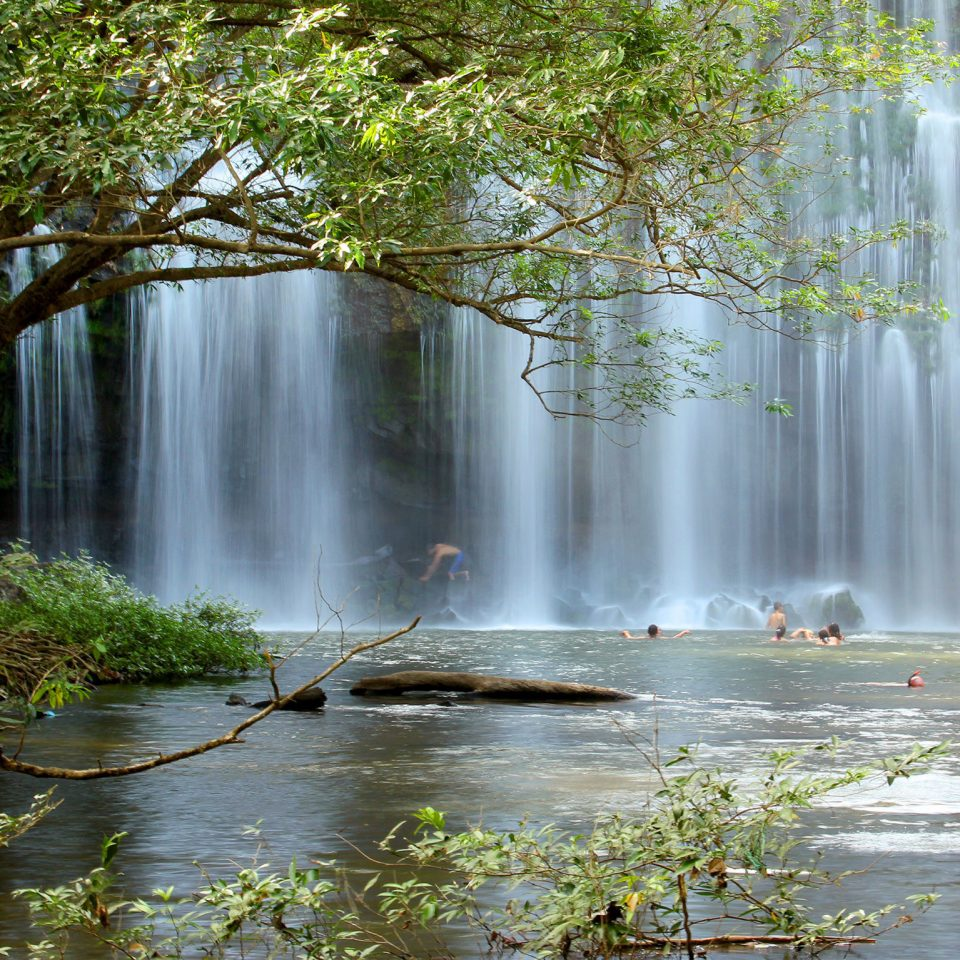Adventure Natural wonders tree water Nature Waterfall habitat watercourse water feature River stream pond Forest autumn wasserfall rainforest Jungle woodland