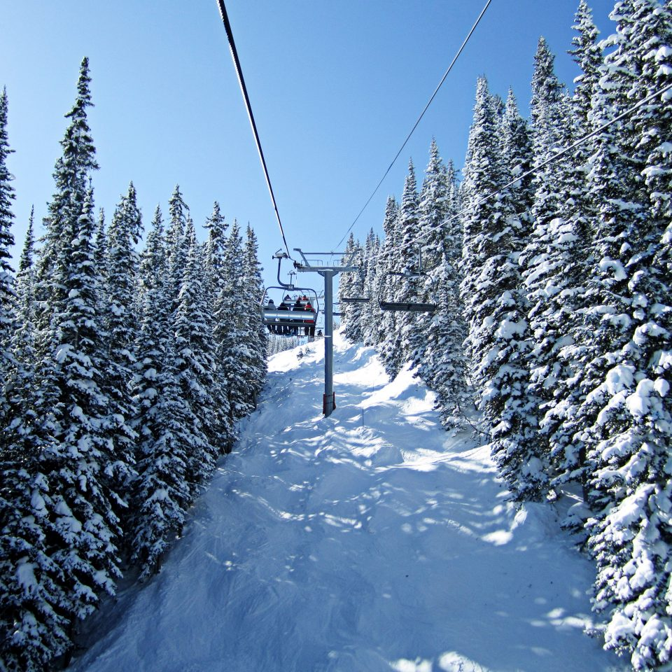 Adventure Mountains Natural wonders Nature Outdoor Activities Outdoors Scenic views Ski tree snow Winter weather geological phenomenon season slope woody plant freezing hill Forest piste mountain fir spruce branch wooded hillside