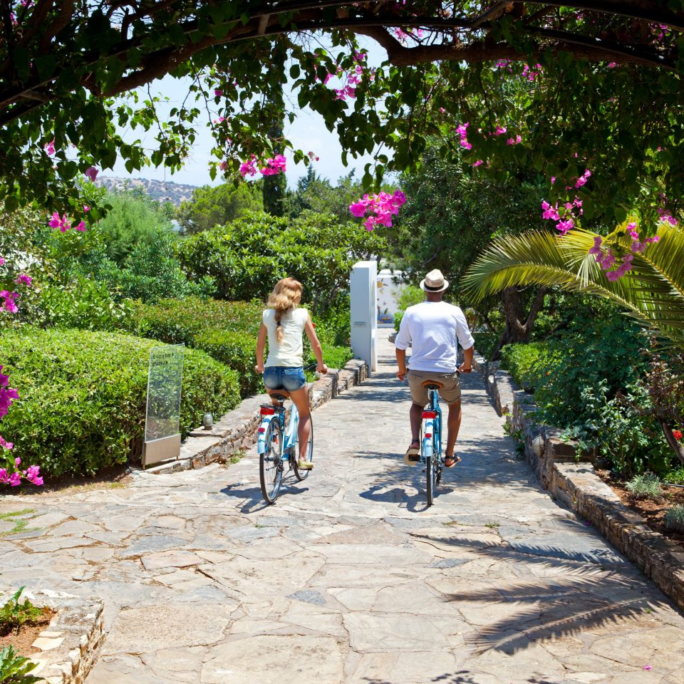 Adventure Grounds Hip Play Romance Sport tree ground bicycle flower cycling Garden park trail plant