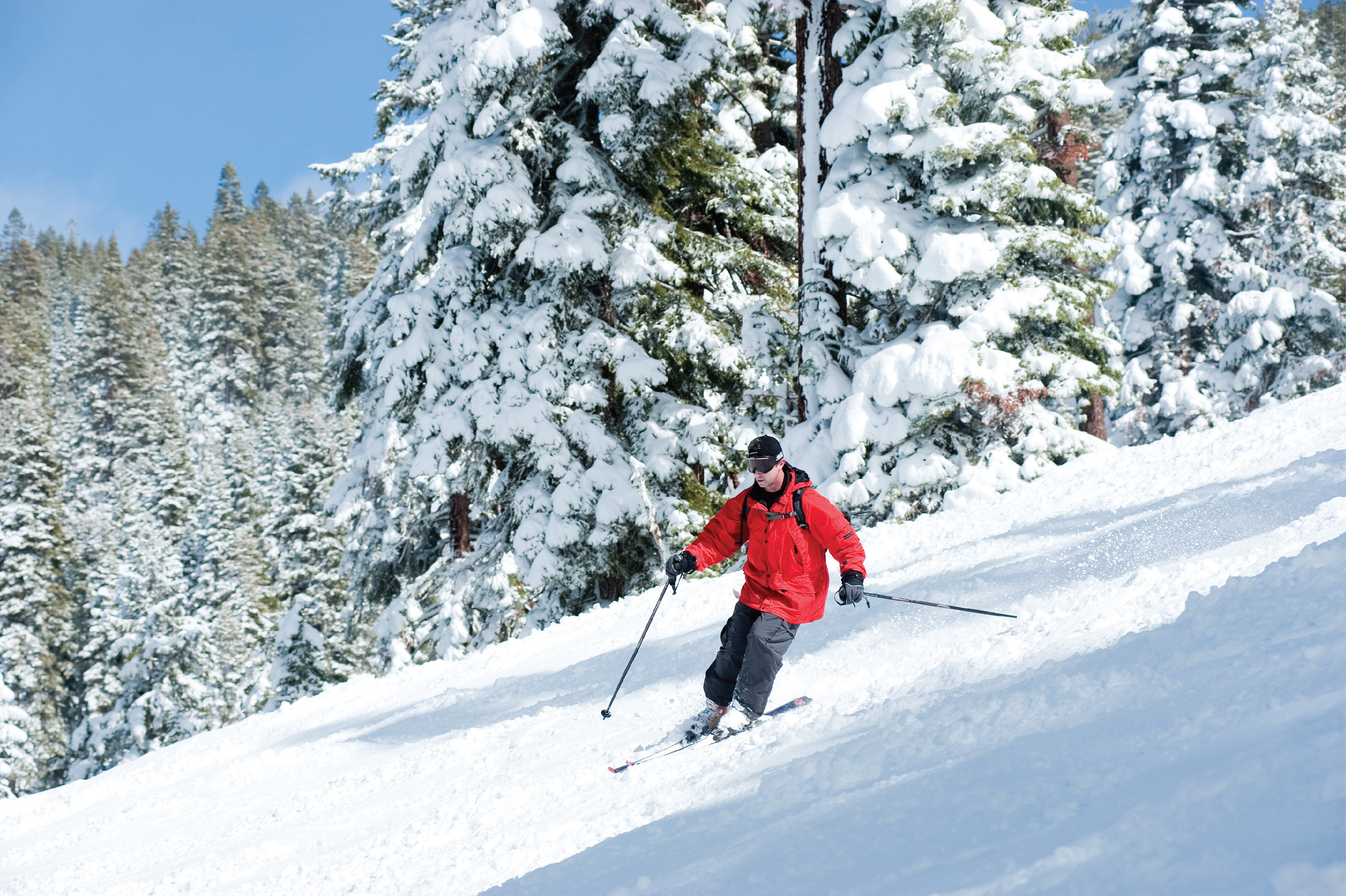 Adventure Outdoor Activities Outdoors Ski Sport snow tree skiing footwear Nature telemark skiing geological phenomenon slope Winter hill sports ski mountaineering piste ski equipment ski touring outdoor recreation ski slope winter sport nordic skiing jacket extreme sport recreation mountain range downhill ridge snowshoe sports equipment wooded day