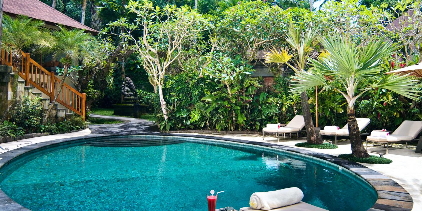 Adventure Pool Safari tree water swimming pool property Resort leisure backyard Villa eco hotel condominium caribbean swimming