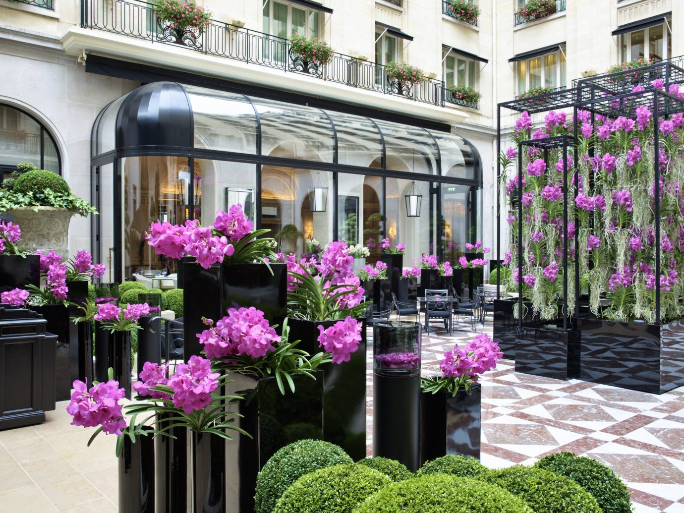 Hotels outdoor flower arranging pink floristry flower aisle purple flora plant Balcony floral design Courtyard estate Garden retail decorated