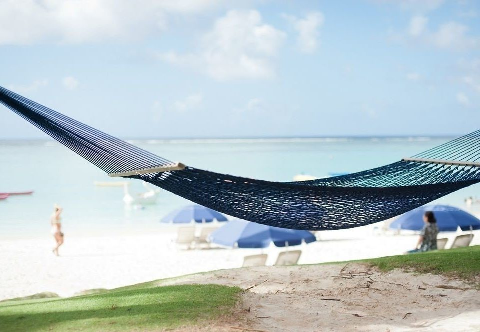 sky airplane airliner aircraft vehicle wing aviation hammock sandy day