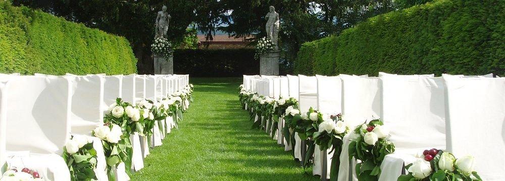 grass tree aisle ceremony flower arranging flower wedding floristry floral design lined arranged