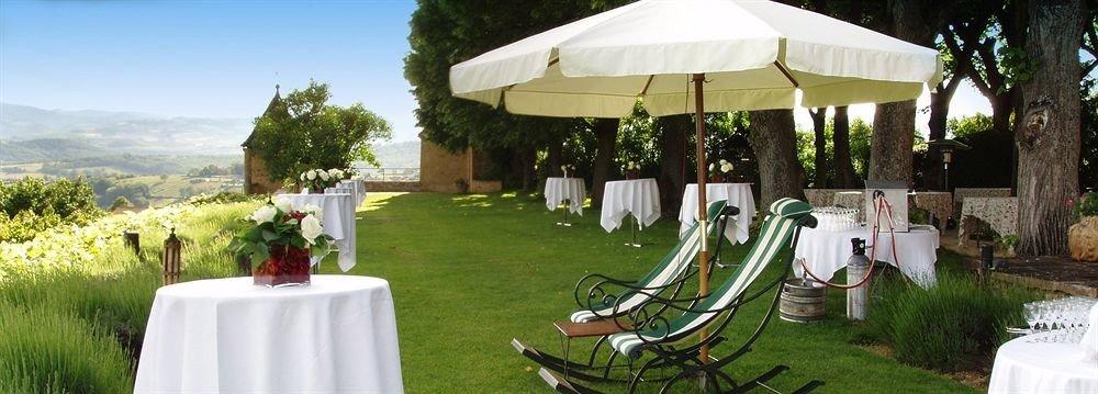 grass tree chair lawn wedding ceremony aisle backyard wedding reception set