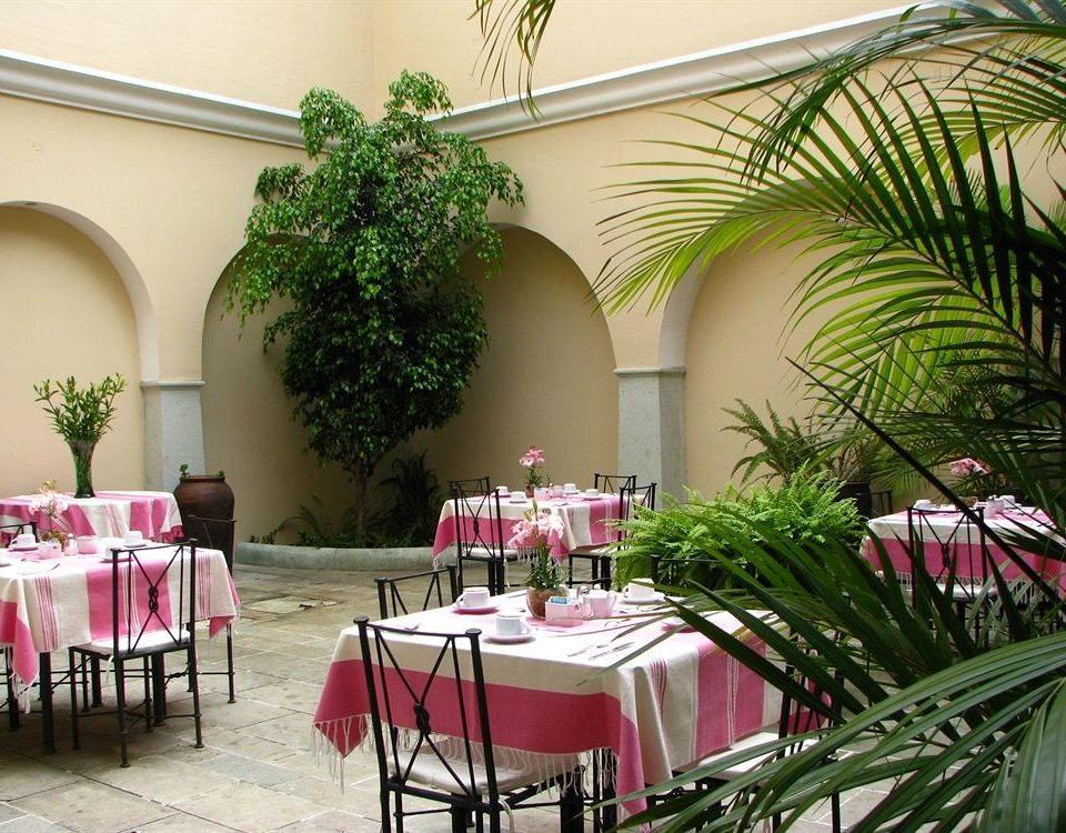 plant restaurant floristry flower arranging function hall wedding flower aisle floral design banquet hacienda