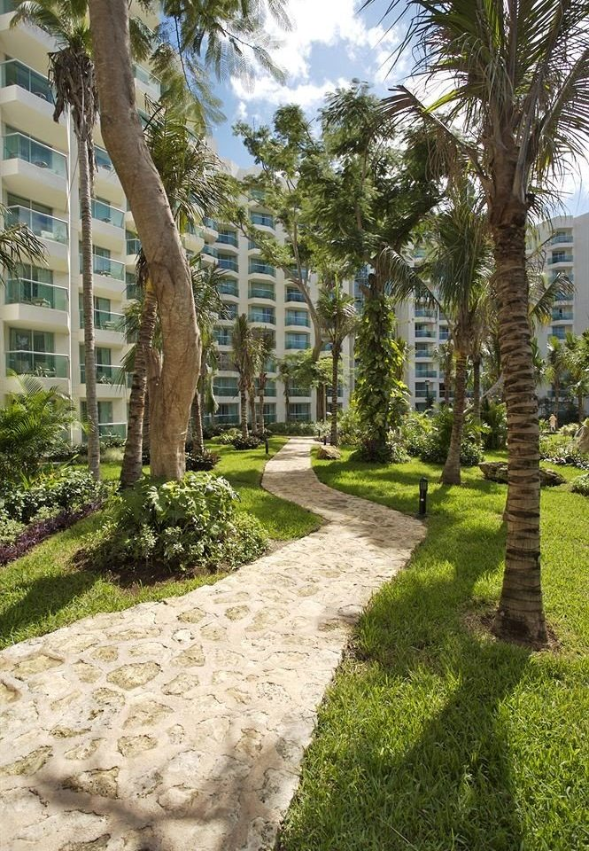 All-inclusive Exterior Grounds Modern Waterfront tree grass plant property botany walkway Garden arecales woody plant yard home lawn backyard landscape park plantation flower Courtyard landscaping shrub botanical garden