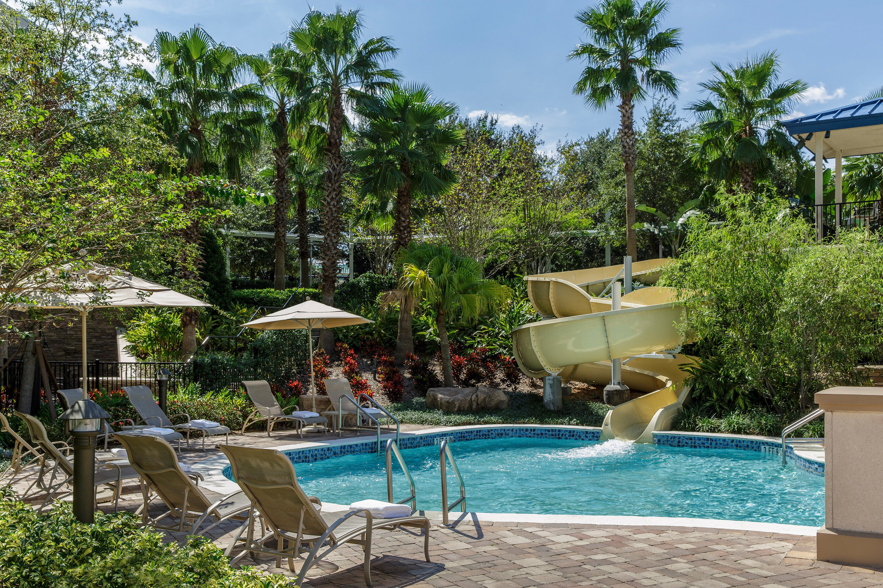 All-inclusive Lounge Play Pool tree sky swimming pool property Resort Picnic condominium backyard Villa Garden lawn eco hotel Deck shade