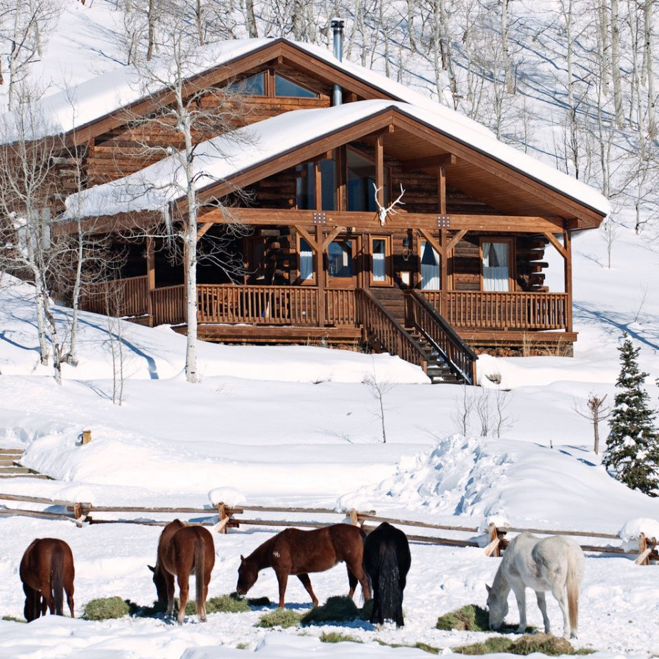 All-inclusive Exterior Lodge Outdoor Activities Outdoors Ranch Romantic snow tree Winter transport weather season geological phenomenon sugar house group Resort log cabin vehicle
