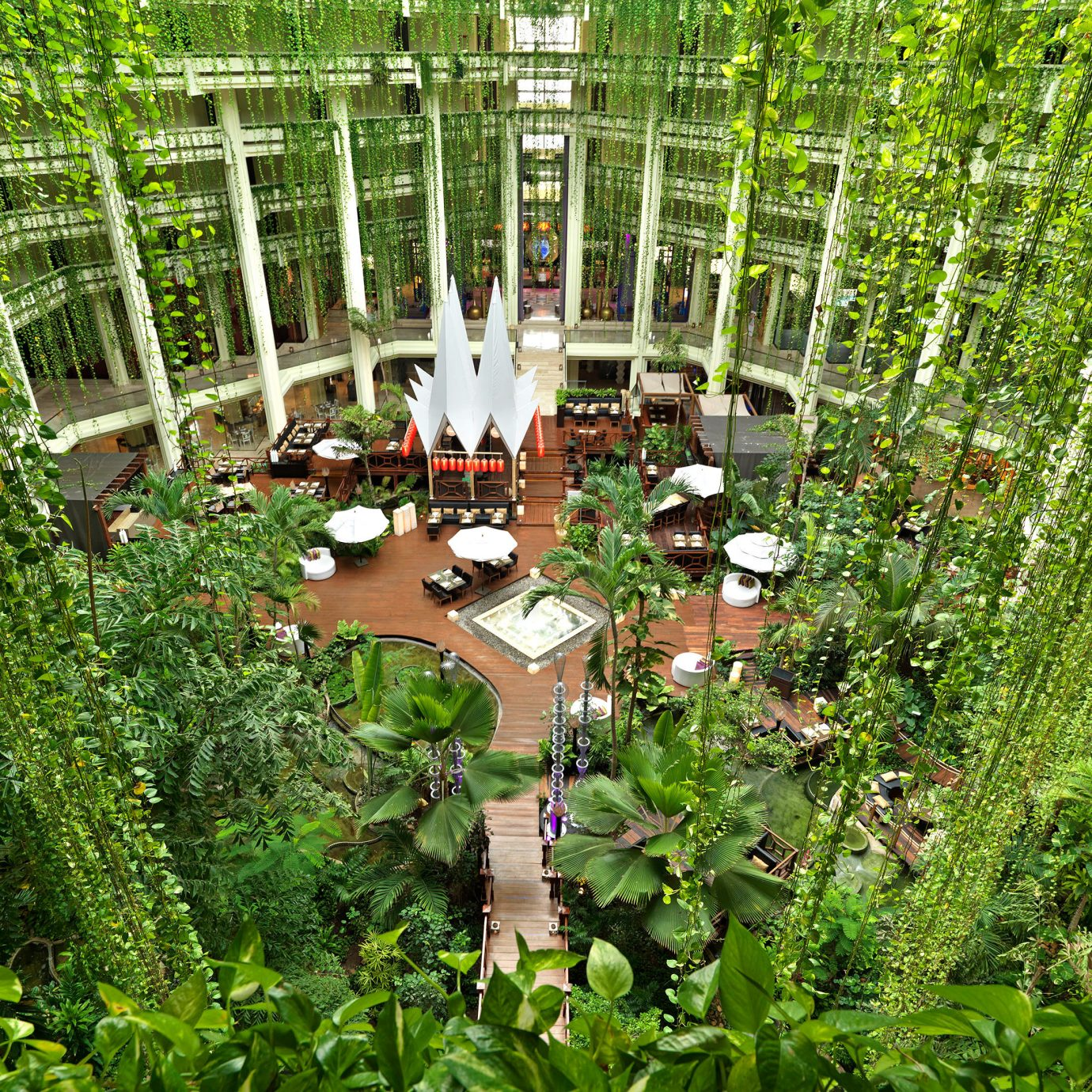 All-inclusive Family Lobby Modern Resort Tropical tree Garden green building botany plant backyard flower yard woodland Forest botanical garden outdoor structure Jungle rainforest lawn landscape architect pond bushes surrounded