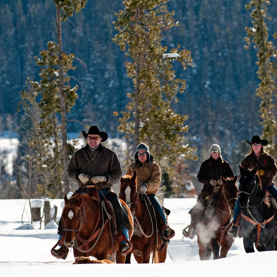 All-inclusive Lodge Mountains Outdoor Activities Outdoors Ranch Romantic tree snow transport Winter horse weather sled season animal sports vehicle horse like mammal