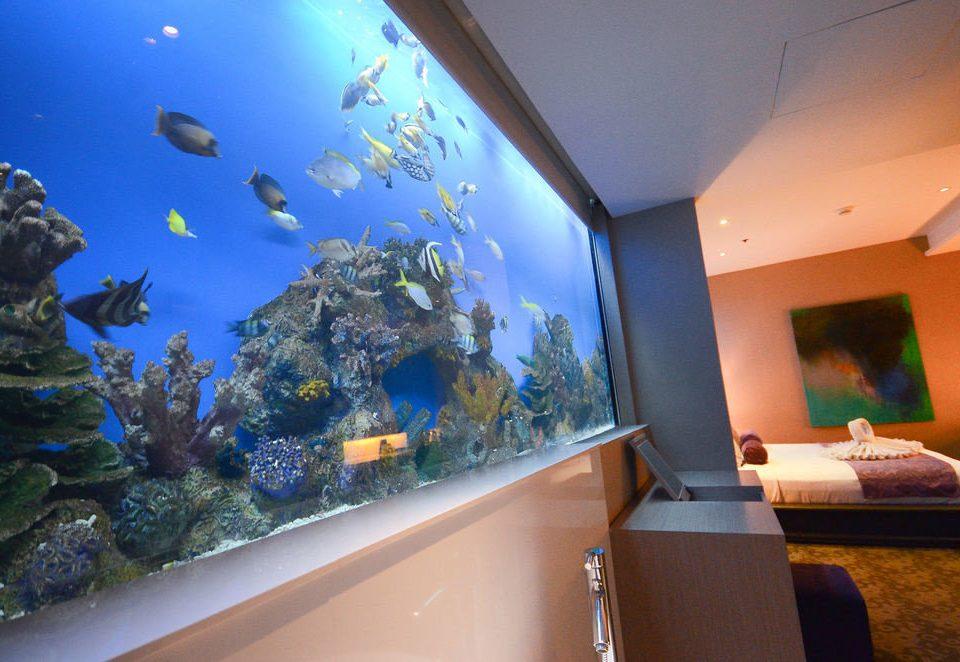 aquarium vessel biology