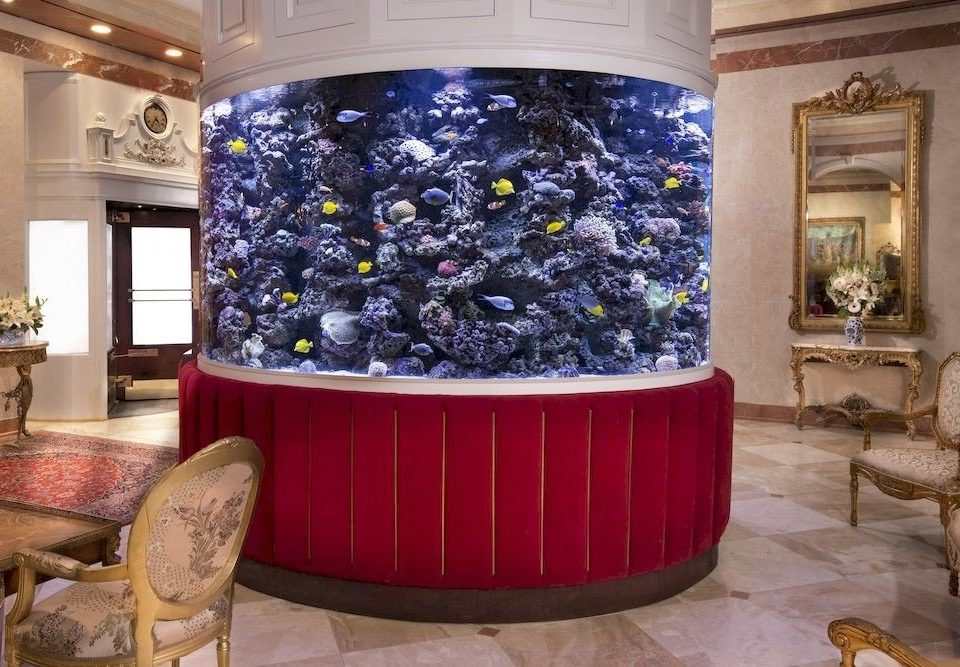 man made object red aquarium living room