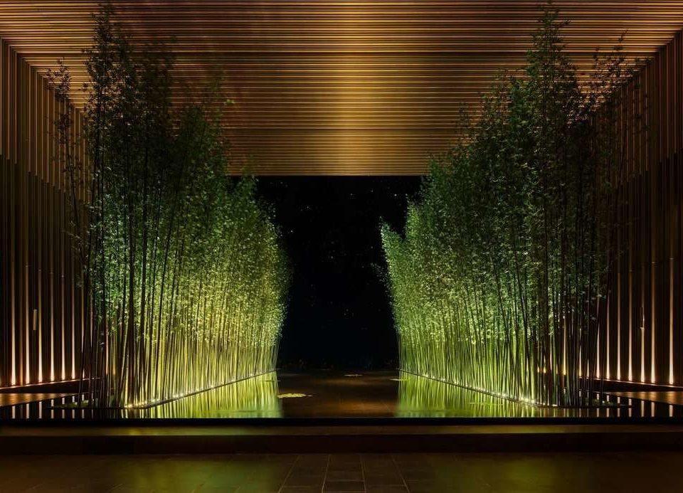 green light night Architecture sunlight lighting arch