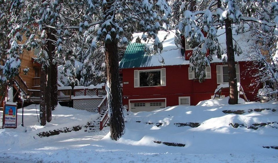 Architecture B&B Buildings Cabin Exterior snow tree Winter weather covered season Nature freezing house slope