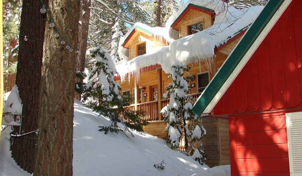 Architecture B&B Buildings Cabin Exterior tree snow Winter house season