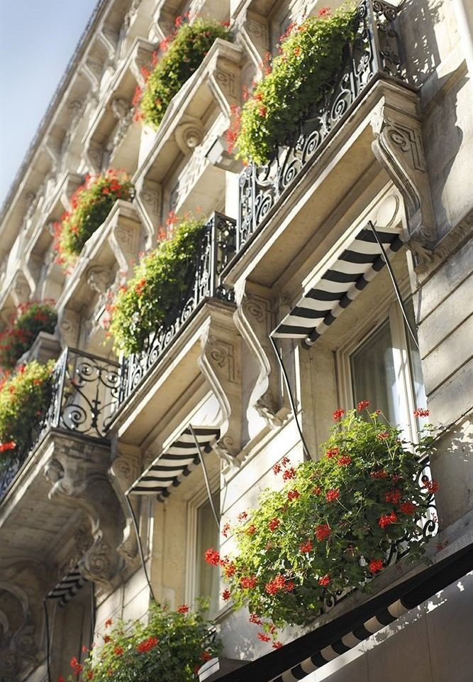 flower neighbourhood house Architecture Balcony street Downtown Courtyard condominium plant stone