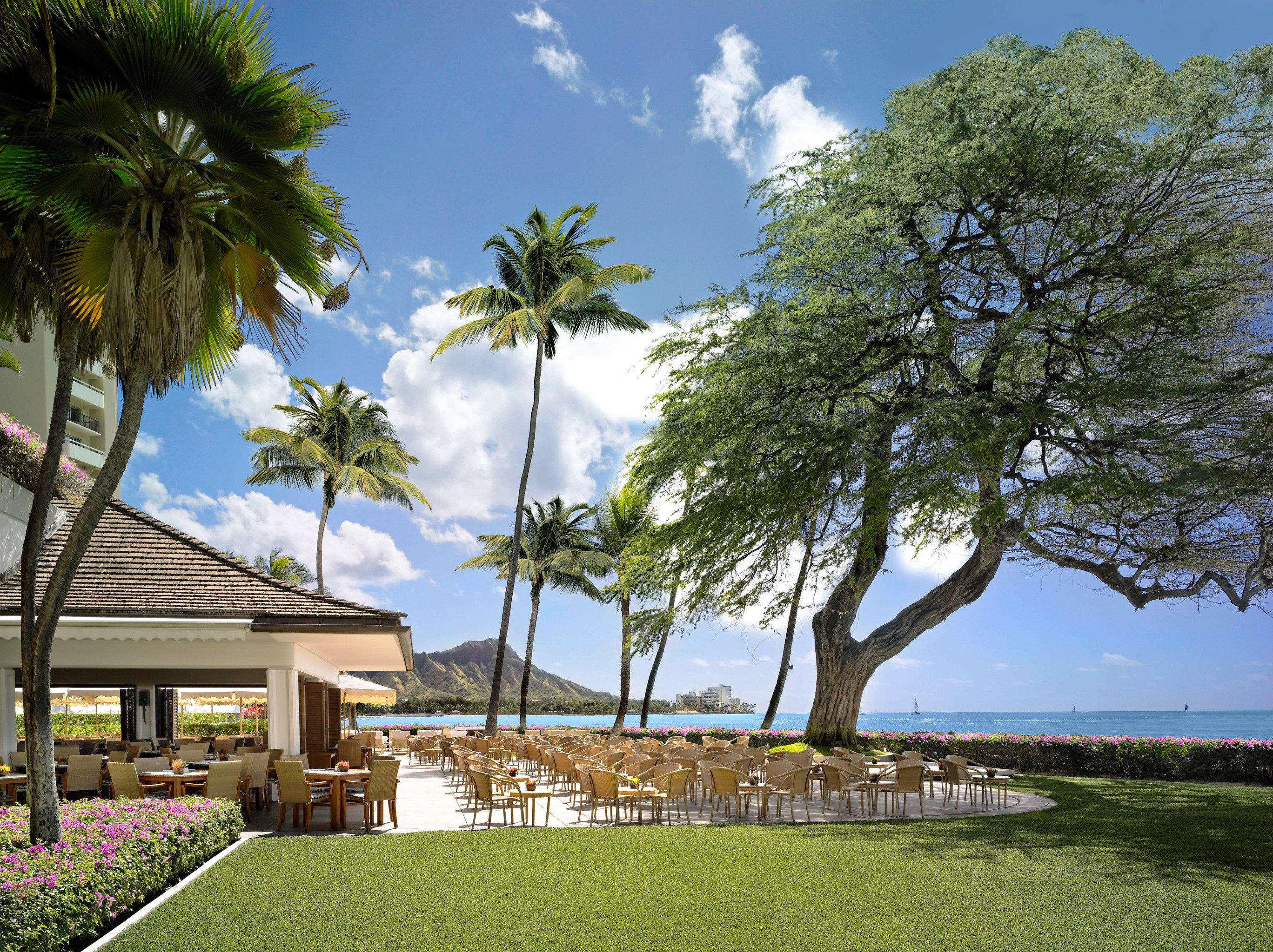 Architecture Beachfront Boutique Hotels Buildings Exterior Hawaii Honolulu Hotels Luxury Resort Scenic views Trip Ideas tree sky grass property plant arecales home woody plant residential area park Beach palm family caribbean flower lawn Villa palm