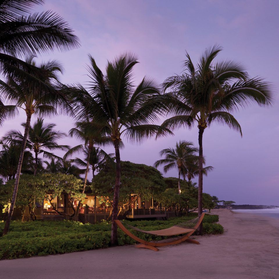 Architecture Beach Buildings Exterior Nightlife Resort Scenic views tree sky palm plant palm family Ocean Sea tropics Coast Sunset arecales shore woody plant morning evening caribbean dusk Island sandy