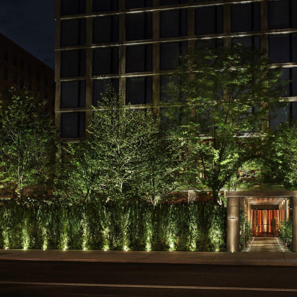tree light Architecture night plant lighting home landscape lighting house biome grass
