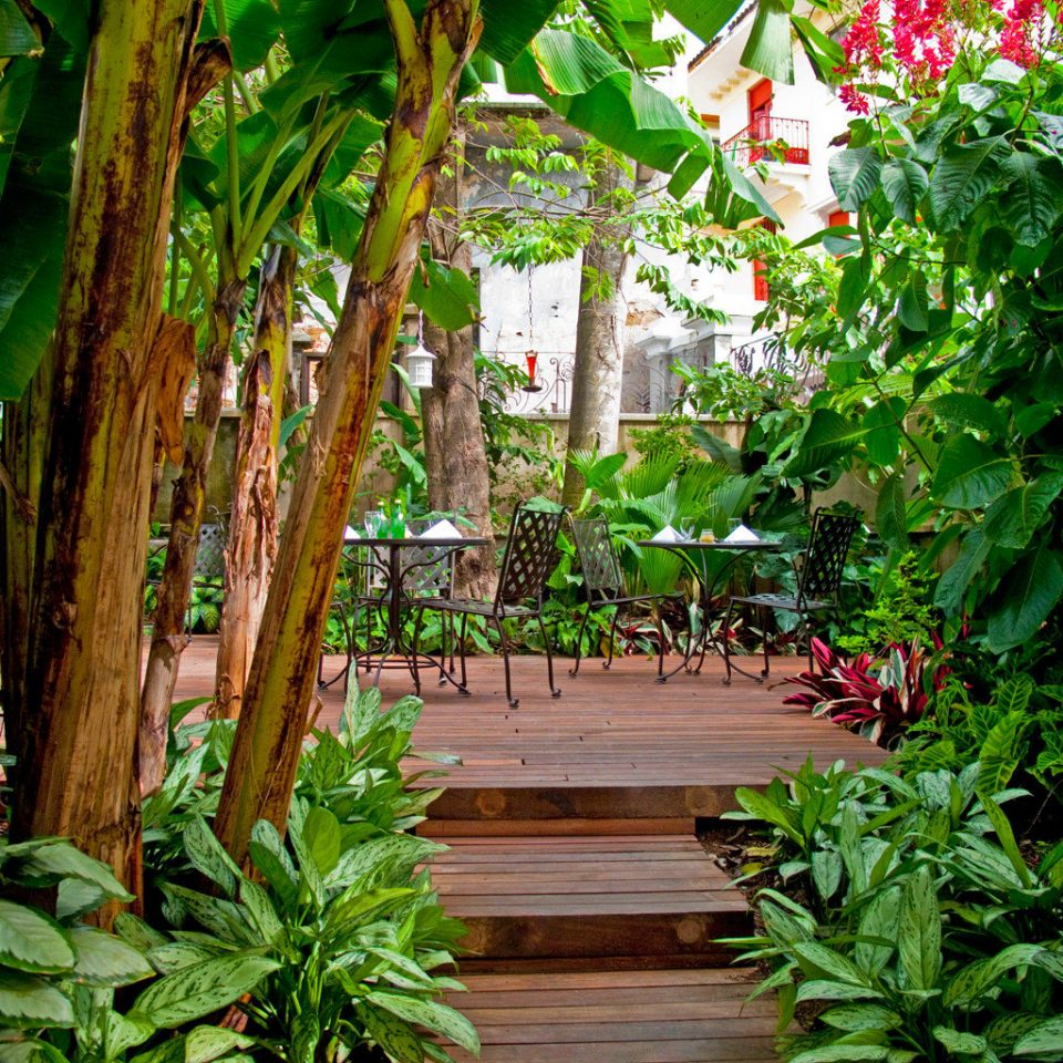Architecture Boutique Buildings Garden Patio tree plant habitat green flora botany flower rainforest Jungle Forest tropics backyard leaf yard wooden Resort arecales botanical garden outdoor structure Courtyard bushes surrounded