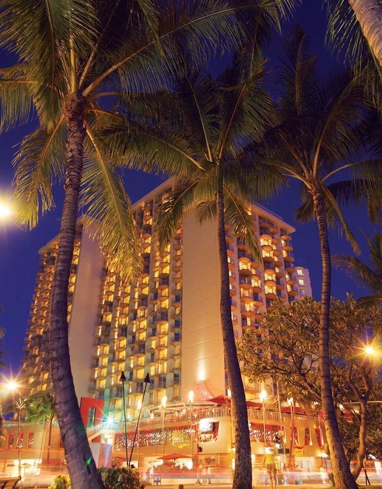 Architecture Buildings Exterior Nightlife Resort tree street plant night City arecales woody plant evening light christmas decoration palm family cityscape palm