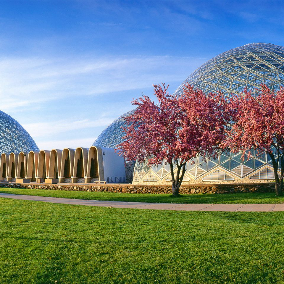 Architecture Buildings City Scenic views grass sky building dome tree field lawn green park Garden flower botanical garden lush day