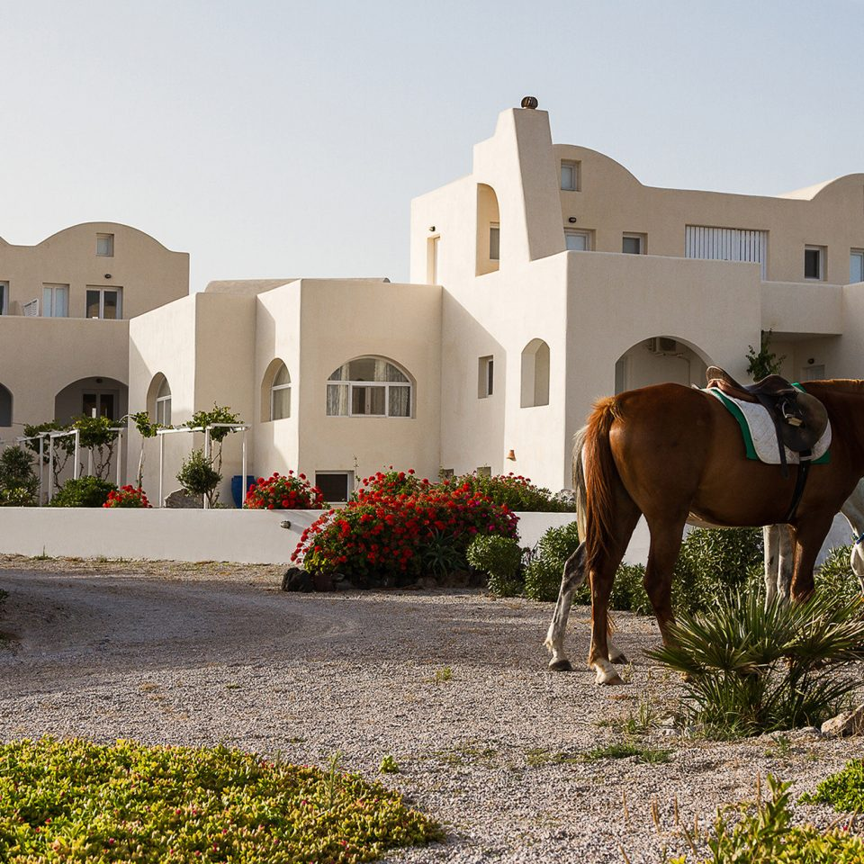 Architecture Buildings Classic Country Cultural Exterior Grounds sky grass house home horse
