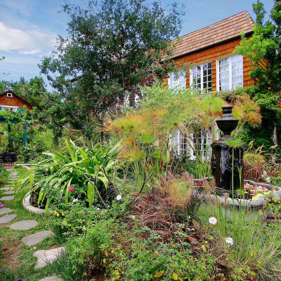 Architecture Buildings Exterior Garden Grounds tree grass house botany yard flower backyard Resort botanical garden Jungle Courtyard Village bushes surrounded