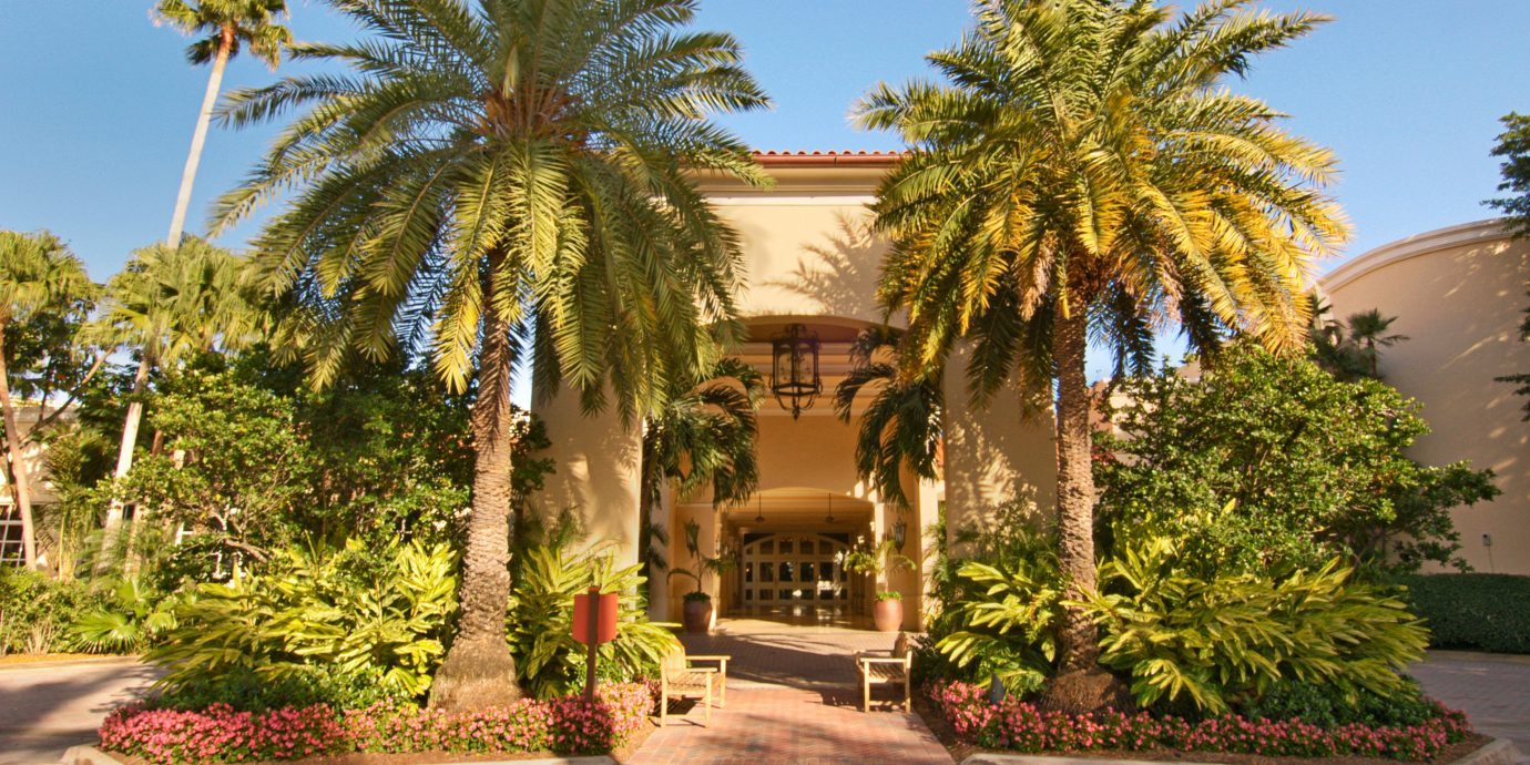 Architecture Buildings Exterior tree sky road palm street property Resort plaza arecales Courtyard home hacienda palm family Villa Garden plant palace mansion bushes