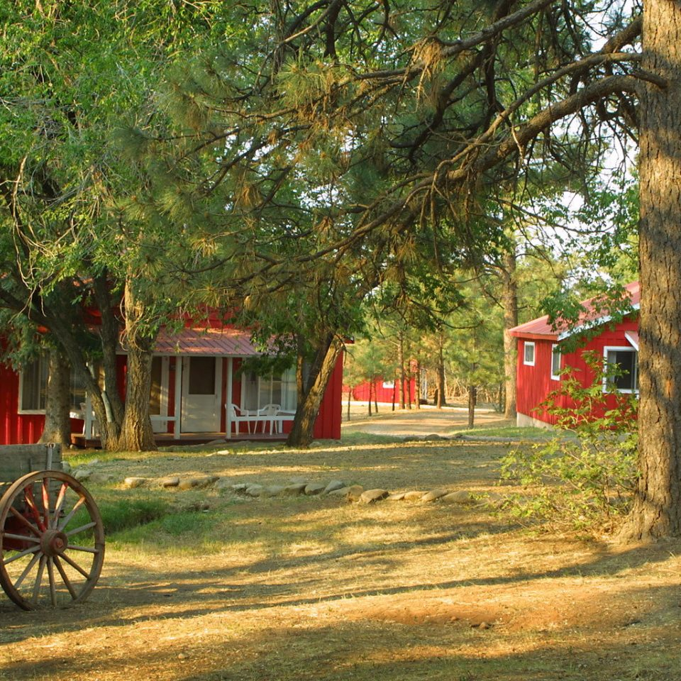 Architecture Buildings Exterior Grounds Outdoors Ranch tree grass ground carriage horse drawn pulling red Farm rural area cart home plant pulled Village autumn cottage flower