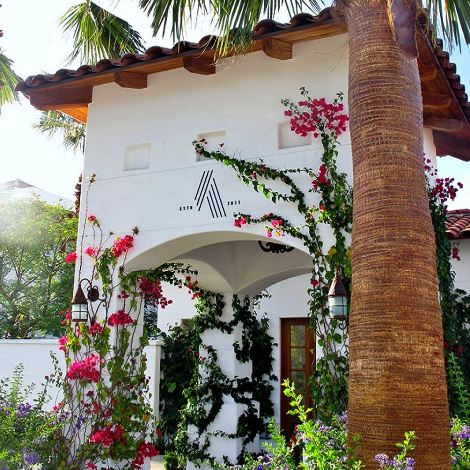 Architecture Buildings Exterior Garden tree flora flower house Resort shrine Jungle Village plant surrounded
