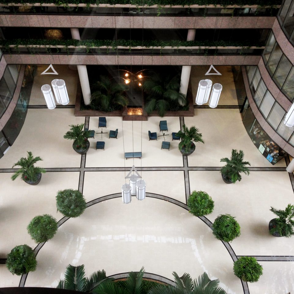 Architecture Classic Lobby Resort flower christmas decoration plant mansion Courtyard