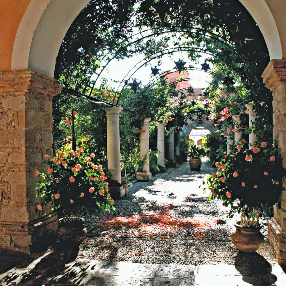 Country Exterior Luxury Rustic arch plant Architecture house flower Courtyard ancient history stone Garden surrounded