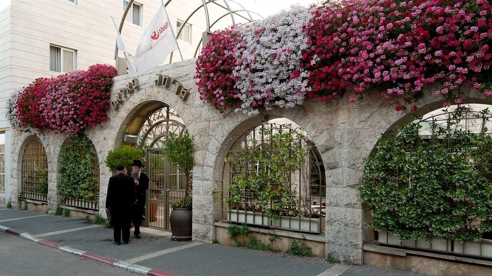flower plant Architecture Courtyard aisle floristry arch stone walkway