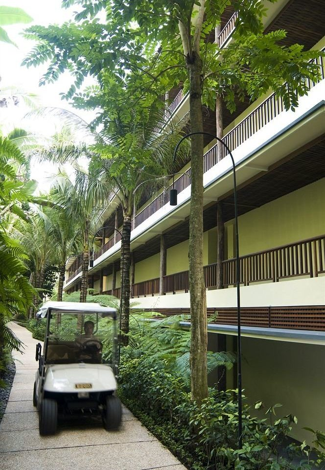 tree house Resort Architecture condominium home Garden Courtyard arecales plant van