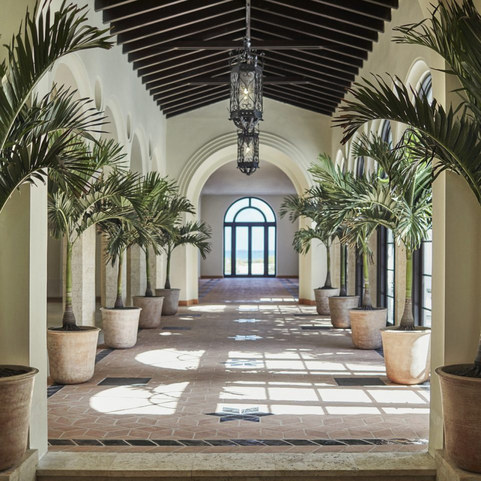 Hotels plant property building Architecture home Lobby mansion palm Courtyard lighting arch column hacienda hall Villa living room court colonnade