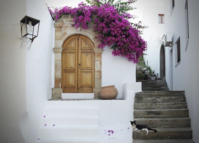 flower purple property Architecture home house door