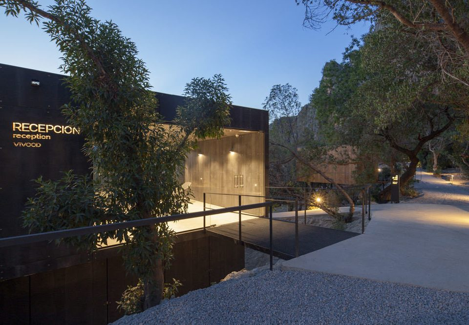 tree property house neighbourhood home Architecture residential area