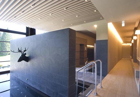 Architecture daylighting lighting Lobby professional headquarters steel