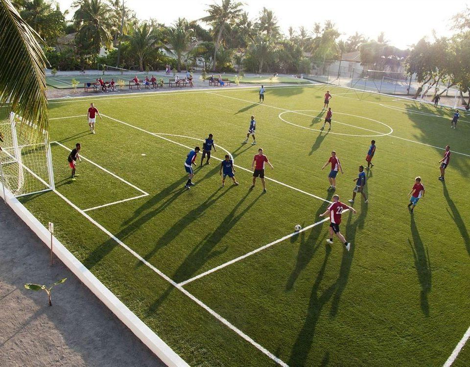 grass tree sky structure sport venue soccer specific stadium stadium soccer sports arena race track lawn