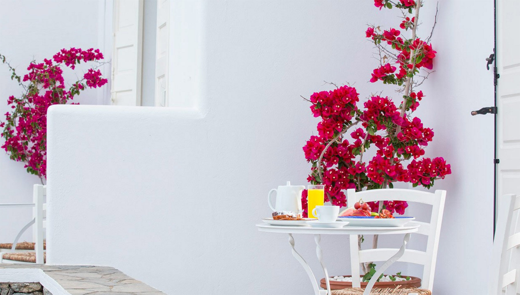 white pink red flower arranging flower floristry plant spring art floral design centrepiece