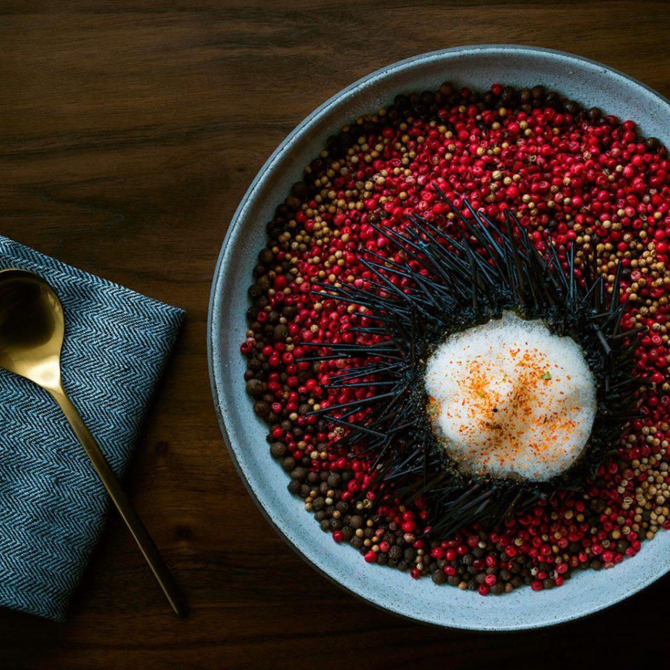 color red plate plant flower art food leaf sweetness flavor macro photography tableware dishware