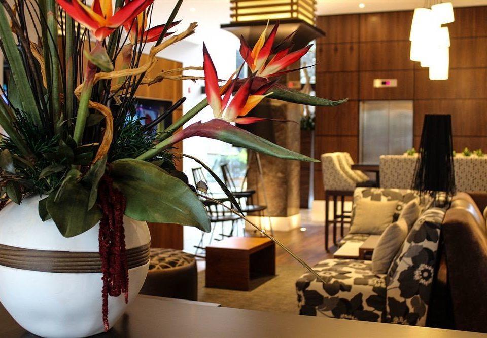 plant floristry art flower restaurant