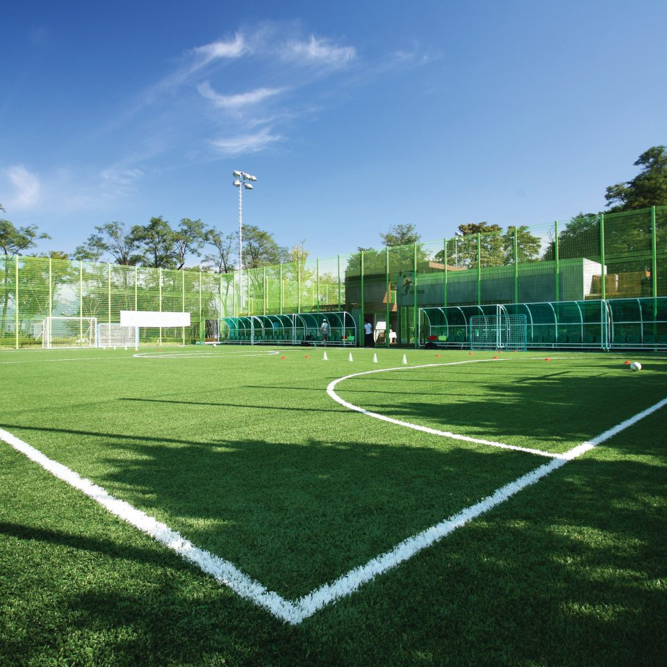 grass sky structure baseball field lawn sport venue soccer specific stadium player green stadium net tennis court residential area artificial turf