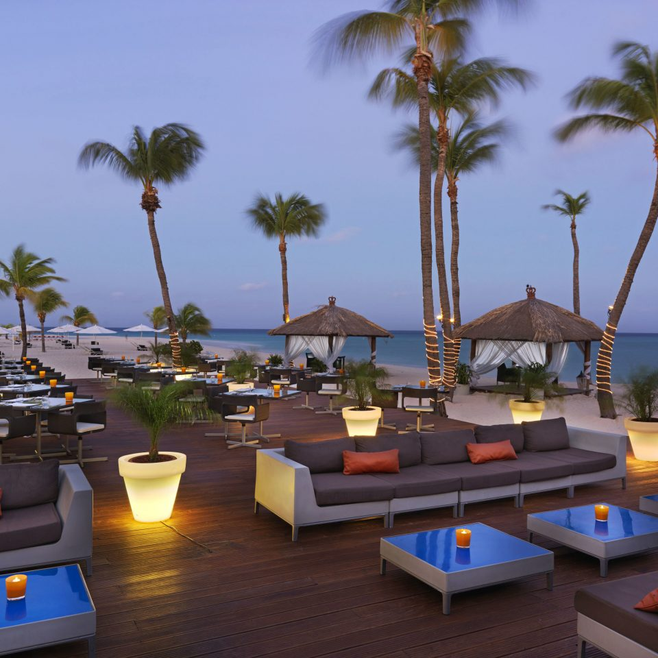Aruba Bar Beachfront Dining Drink Eat Hotels Tropical tree sky Resort palm arecales Beach caribbean condominium Villa Sea plant