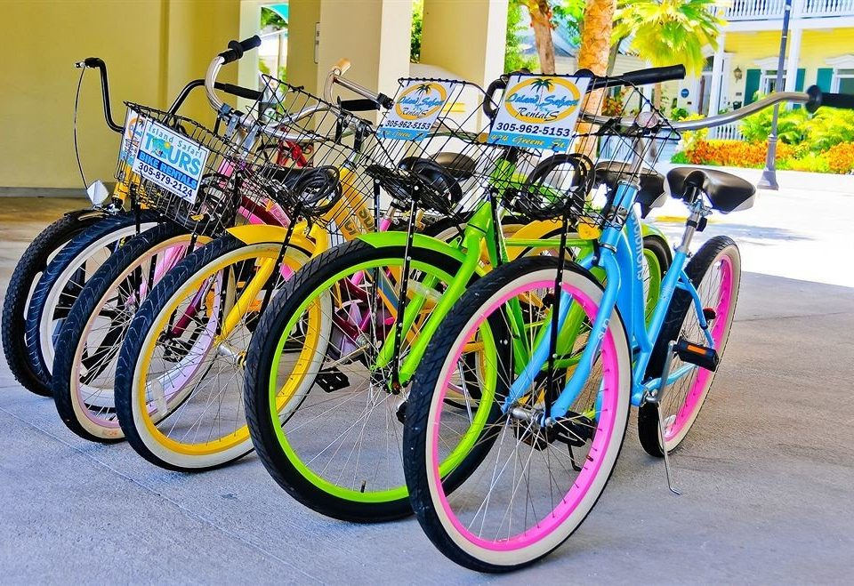 bicycle road bicycle road parked vehicle land vehicle cycling racing bicycle street wheel sports equipment road cycling cycle sport bicycle racing endurance sports mountain bike pulling colorful cart carriage attached rack