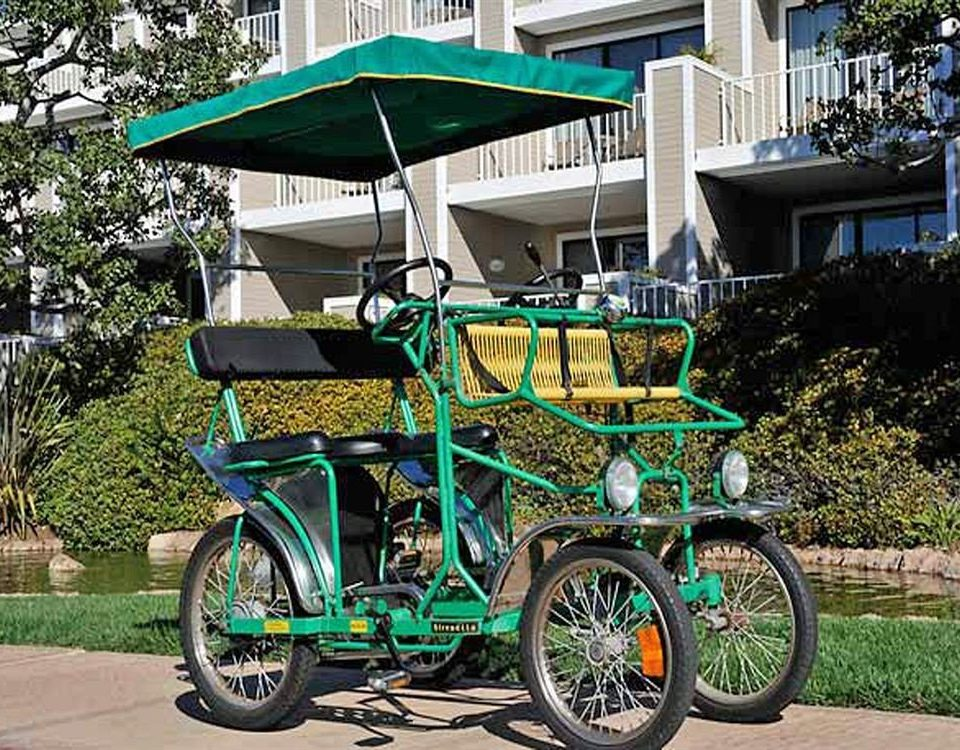 tree green vehicle car land vehicle transport street wheel cart carriage bicycle rickshaw motorcycle automobile make pulling colorful