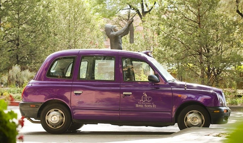 tree car vehicle land vehicle family car parked city car transport automobile make tx4 minivan compact sport utility vehicle compact car commercial vehicle old purple trunk roof